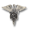 insignia medical services
