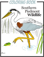 Southern Piedmont Wildlife Coloring Book